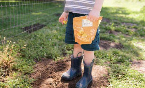 Little Handfuls Organic photography