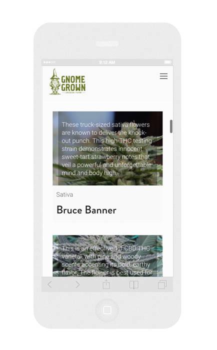 Mobile Cannabis Dispensary Web Design