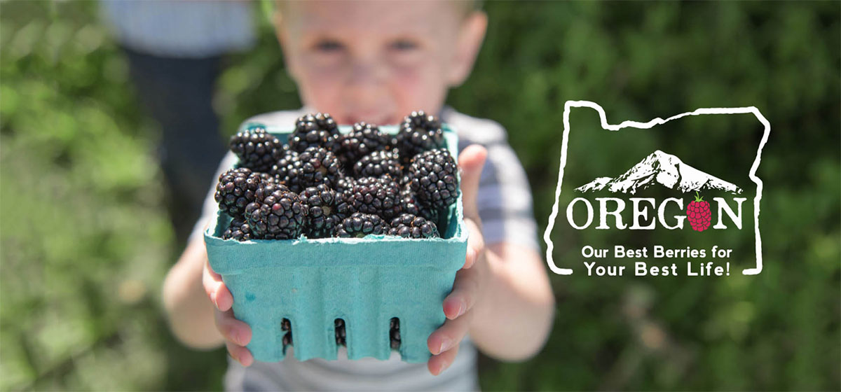 Oregon Berry Commission brand design